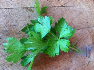 Flat Italian Parsley Great with green salad, mixed into rice or quinoa Make a salad with parsley, left-over chicken, and toasted almonds