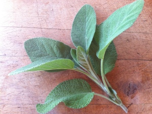 Sage Cooked in butter and poured onto warm pasta White bean soup: add sage to beans, greens, and a soup base.